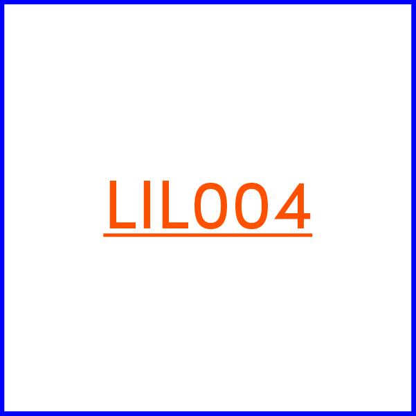 lil_004_1b_170222